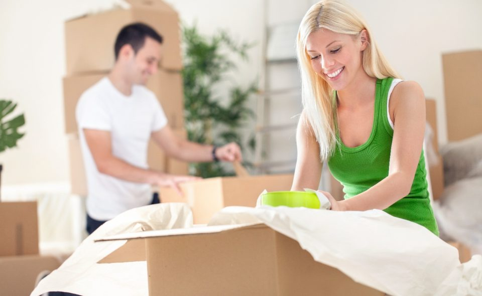 MOVING HOUSE CLEANERS
